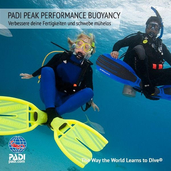 Sunshine Divers - PADI TARIERUNG IN PERFEKTION